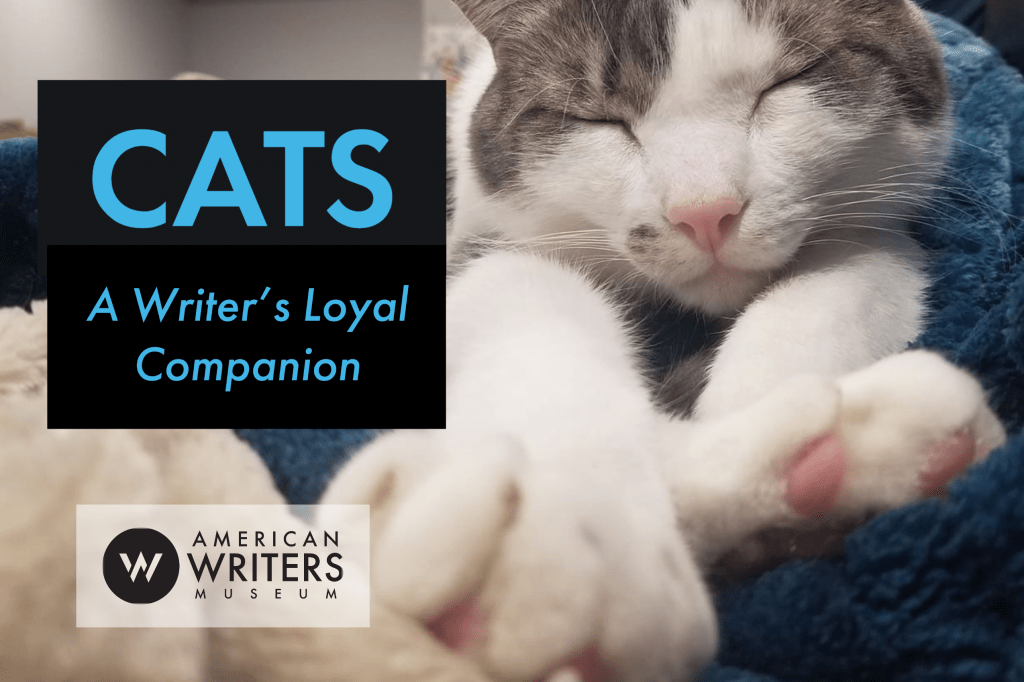 Cats, A Writer's Loyal Companion brings together a list of cat books