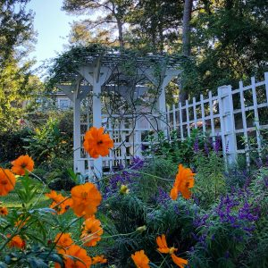 Visit Eduora Welty's Home and Garden in Jackson, Mississippi